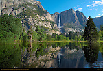 Yosemite Falls and Leidig Meadow Fir Reflected in Spring Flood at Leidig Meadow, Yosemite National Park