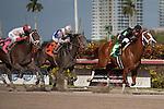 Big Guy Ian wins a maiden allowance race for 3yo at Gulfstream Park, Hallandale Beach Florida. 01-25-2014