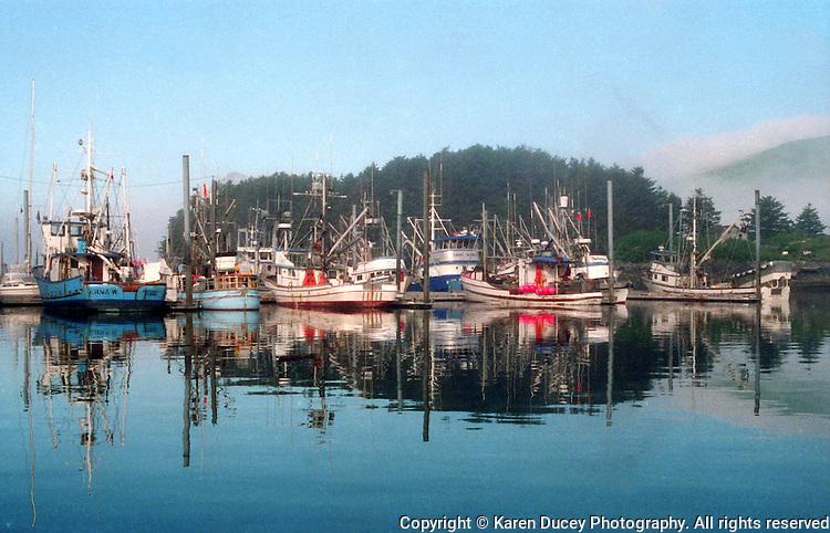 Salmon seiners in port in Dog Bay Harbor, Kodiak, Alaska