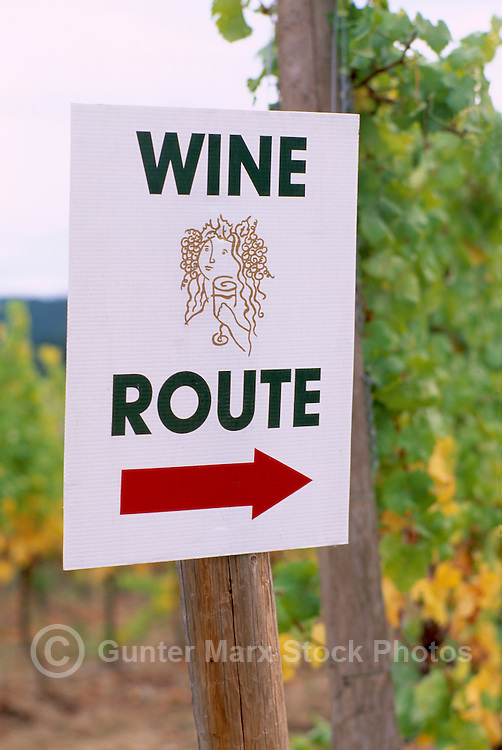 Wine Route Sign at Cherry Point Vineyards during the Cowichan Valley Wine & Culinary Festival, on Vancouver Island, British Columbia, Canada