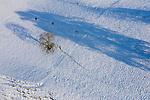 Mauren, Drohnenaufnahme: Liechtenstein.<br /> <br /> Foto: ©Paul J. Trummer