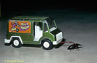 1C06-001b  Beetle - pulling truck 143x its own weight
