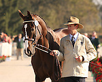 29 September 2010. #555 Peter Atkins and Henry Jota Hampton from team Australia.