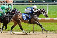 Carol's Jimmy winning at Delaware Park on 6/15/13