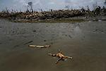 Myanmar: Cyclone Nargis Aftermath