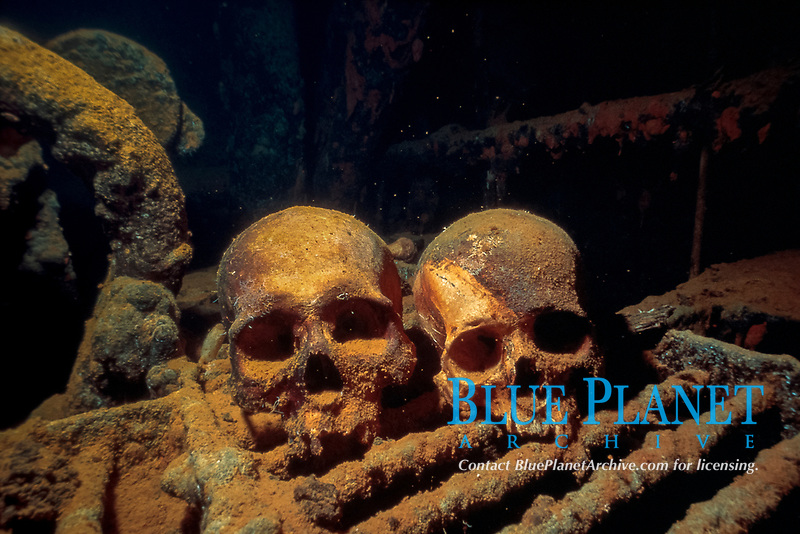 skulls or human remains in the engine room of the shipwreck Akoku Maru, Truk Lagoon, Chuuk, Micronesia, Pacific Ocean