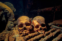 skulls or human remains in the engine room of the shipwreck Akoku Maru, Truk Lagoon, Chuuk, Micronesia, Pacific Ocean
