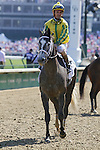 May 01, 2015:  Promise Me Silver and Robby Albarado win the 60th running of The Eight Belles Grade 3 $200,000 at Churchill Downs for owner Robert Luttrell and trainer Bret Calhoun .  Candice Chavez/ESW/CSM