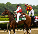 Elmont, NY - JUNE 09: #1, Justify, with Jockey Mike Smith and the virtual fist bump after their win for Trainer Bob Baffert in the 150th running of the Belmont Stakes at Belmont Park on June 9, 2018 in Elmont, New York. (Photo by Carson Dennis/Eclipse Sportswire/Getty Images)