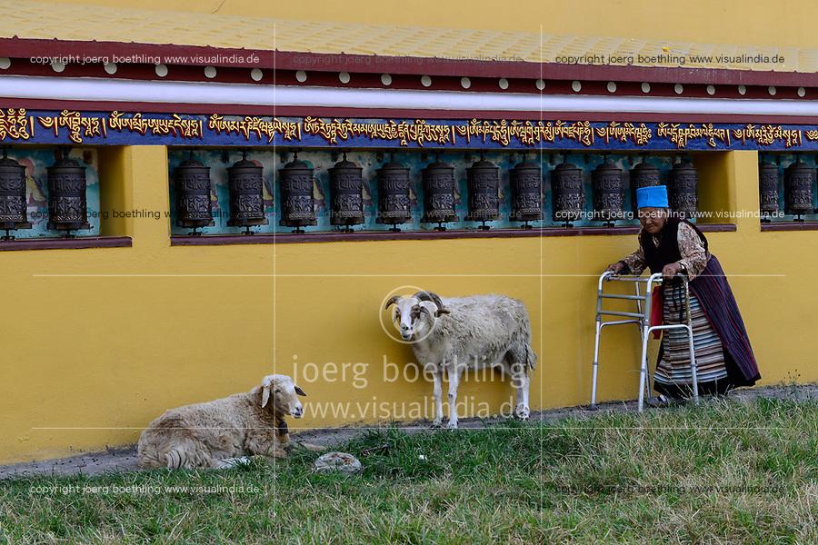 NEPAL Pokhara, tibetan refugee camp Prithvi, old tibetan handicapped woman circle around Stupa / NEPAL Pokhara, tibetisches Fluechtlingslager Prithivi, alte Tibeterin umrundet Stupa mit Gebetsmuehlen