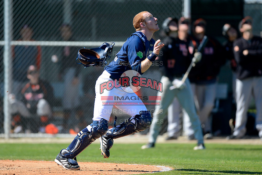 Notre Dame Fighting Irish catcher Forrest Johnson #30 looks for a pop up foul ball during a game against the Mercer Bears at the Buck O'Neil Complex on February 17, 2013 in Sarasota, Florida.  Mercer defeated Notre Dame 5-4.  (Mike Janes/Four Seam Images)