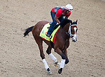APRIL 30, 2015: Danzig Moon, trained by Mark Casse exercises in preparation for the 141st Kentucky Oaks during morning workouts at Churchill Downs in Louisville, Kentucky. Ting Shen/ESW/Cal Sport Media