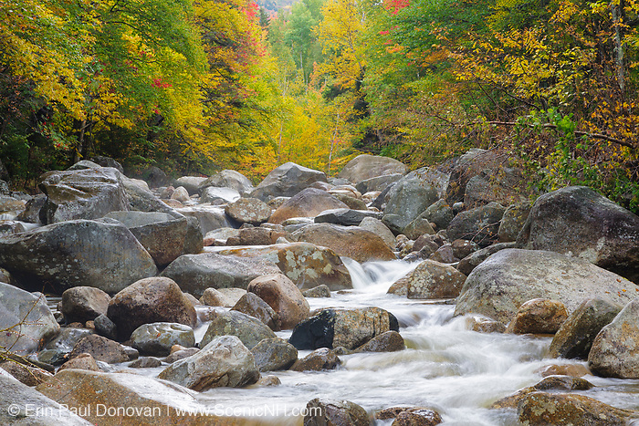 Zealand River in Bethlehem, New Hampshire during the autumn months. This area was once part of the Zealand Valley Railroad, which was a logging railroad in operation from 1886-1897.