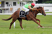 15th May 2020, Muenchen-Riem racecourse, Munich, Germany. Flat racing;  Anatello with Clement Lecoeuvre  arrives at the finish line to win