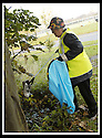 22/10/2007       Copyright Pic: James Stewart.File Name : 03_Larbert_Litter.MEMBERS OF THE PUBLIC GET TOGETHER ON THE STREETS AROUND LARBERT TO COLLECT LITTER.James Stewart Photo Agency 19 Carronlea Drive, Falkirk. FK2 8DN      Vat Reg No. 607 6932 25.Office     : +44 (0)1324 570906     .Mobile   : +44 (0)7721 416997.Fax         : +44 (0)1324 570906.E-mail  :  jim@jspa.co.uk.If you require further information then contact Jim Stewart on any of the numbers above........