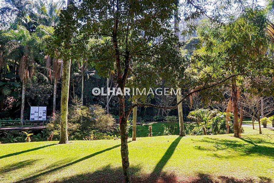 Alameda e córrego, Jardim Botânico, São Paulo. 2021. Foto Luíza Lucchetti
