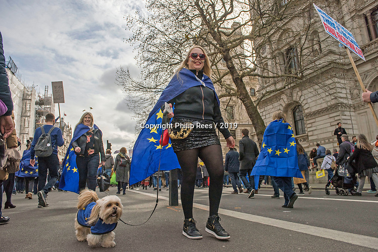 """A protester with her dog dressed in the European flag walks through Westminster during the """"Put it to the People"""" rally which made it's way through central London today. Demonstrators from across the country gathered to call for a second referendum on Brexit and to march through the UK capital finishing with speeches in Parliament Square opposite the Houses of Parliament in Westminster."""