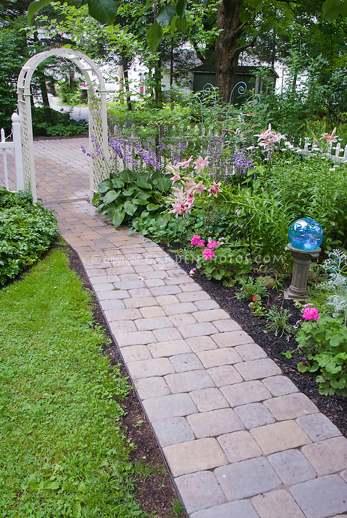 Small shade garden with hostas, lilies, gazing ball, white picket fence, pathway, trellis arbor leading to driveway, house, pachysandra groundcovers, lawn grass. Tidy and cute, full of flowers