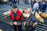 At the Castlemaine Fair in memory of the late John O'Donoghue and as a fundraiser for the Kerry Hospice on Sunday l to r: Billy Clifford (Keel) and Paul Fitzgerald (Waterford).