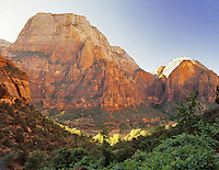View from West Rim Trail. Zion National Park, Utah.
