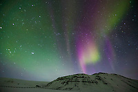 Aurora borealis dance in a starry sky over Slope mountain at the start of the Arctic coastal plains. Trans Alaska oil pipeline in the foreground, Arctic Alaska