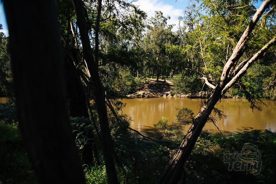 Image Ref: YV496<br /> Location: Normans Reserve, Warrandyte<br /> Date of Shot: 17.10.20