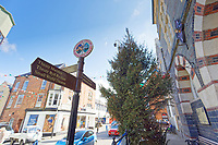 The Christmas tree which still hasn't been removed due to Covid-19 in the town centre of Cardigan, west Wales, UK. Friday 16 April 2021