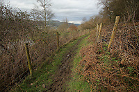 Pictured: The path where the vicious attack took place in Tonna, Wales, UK.<br />
