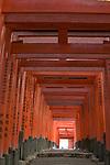 Torii gates, Fushimi Inari Shrine, Kyoto, Honshu, Japan , Fushimi Inari-taisha