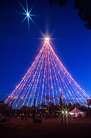 The Zilker Holiday Tree shines bright and lights up the downtown night sky in Austin, Texas.