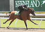 07 April 2011.  Hip #12 MAGICAL TOUCH  Afleet Alex - Magical Mood (GB) filly consigned by Niall Brennan Stables.