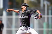 Colorado Rockies pitcher Julian Fernandez (28) during an Instructional League game against the San Francisco Giants on October 8, 2016 at the Giants Baseball Complex in Scottsdale, Arizona.  (Mike Janes/Four Seam Images)