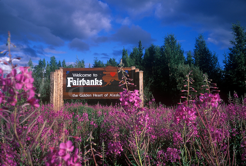 Welcome to Fairbanks sign with fireweed.