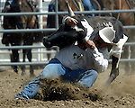 Steer Wrestler Billy Claunch drops his steer with a time of 4.1 seconds during action at the Southeast Weld County CPRA Rodeo on August 12, 2006.
