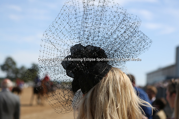 April 11, 2015: Oaklawn Hanicap at Oaklawn Park in Hot Springs, AR. Justin Manning/ESW/CSM