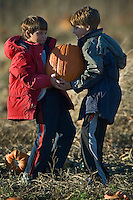 Brothers Jacob, 8, left, and Adam Francis, 10, share the heavy load of carrying one of the four pumpkins their family bought at Acorn Farms pumpkin patch on Worthington Road Sunday, October 29, 2006.<br />