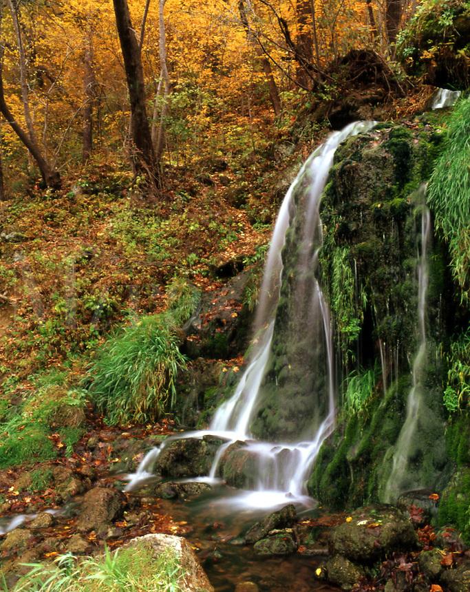 IA43C05 waterfall in autumn, Malanaphy Springs State Preserve, IA. Malanaphy Springs State Preserve, Iowa, Winneshiek County.