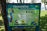 Conservation sign regarding cassowaries