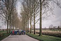 peloton lined up across the road<br /> <br /> Driedaagse Brugge-De Panne 2018<br /> Bruges - De Panne (202km)