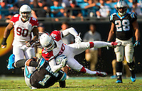 Photography of the Carolina Panthers v. Arizona Cardinals, Sunday afternoon October 30, 2016 at Bank of America Stadium, in Charlotte, NC.<br /> <br /> Charlotte Photographer - PatrickSchneiderPhoto.com