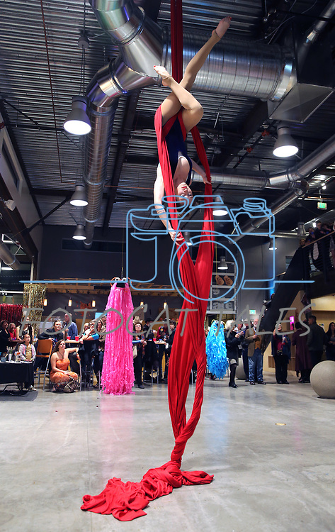Heather Foltz performed as dozens of artists from around the state of Nevada demonstrated their crafts at the annual Capital Collage in Carson City, Nev., on Friday, October 27, 2017. <br /> Photo by Lance Iversen/Nevada Momentum