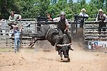 True Grit Bull Camp 2014 - 5.24.2014 - Day 1