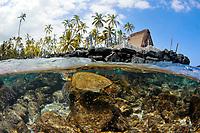 Split image of Hawaiian traditional hut and Green sea turtle, Chelonia mydas, Honaunau Bay, Kona Coast, Big Island, Hawaii, USA, Pacific Ocean
