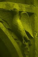 A particular of one of the main entrances to Notre Dame: the bas reliefs of a hawk in monochrome (Paris, 2010).<br /> <br /> Un particolare di una delle entrate principali a Notre Dame: Il bassorilievo di un falco in monocramatico (Parigi, 2010).