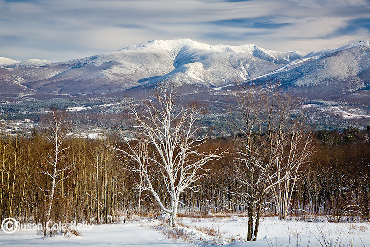 Mount LaFayette, White Mountain National Forest, NH, USA