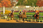 1 November 2009: Thiskyhasnolimit with Shaun Bridgmohan up wins the G3 one mile Iroquois Stakes for two year olds at Churchill Downs in Louisville, Kentucky.
