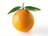 Whole fresh oranges