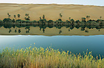 """Afrique. Libye . Serenity and plenitude as we admire the dunes of Oubari reflecting in the still waters of Oum El Ma lake.  Palm-dates trees and reeds border the banks and shelter a few jackals, crows and white head wheatear, or """"moula-moula"""", the Touaregs lucky charm bird"""