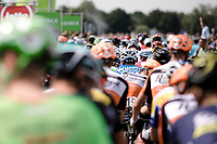 Start in Breda! And off they go...<br /> <br /> Binckbank Tour 2017 (UCI World Tour)<br /> Stage 1: Breda (NL) > Venray (NL) 169,8km