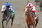 November 29, 2014:  Leave The Light On with Jose Ortiz wins the 101st running of the Grade II Remsen Stakes for 2-year olds, going 1 1/8 mile  at Aqueduct Racetrack. Trainer: Chad Brown. Owner: Klaravich Stables, Inc. . Sue Kawczynski/ESW/CSM